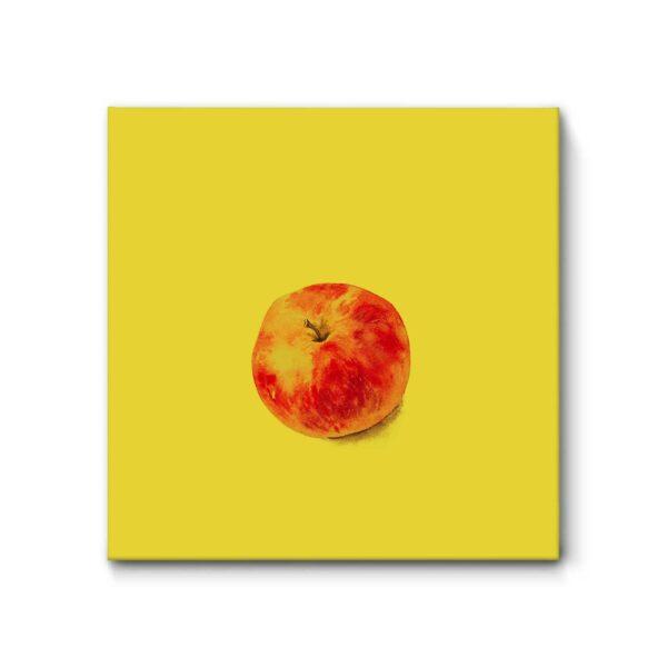 "Akustikbild ""Apfel"", 52x52 cm"