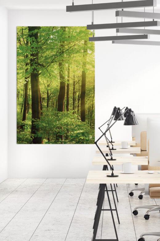 Akustik im Großraumbüro verbessern mit Akustikbild Wald II