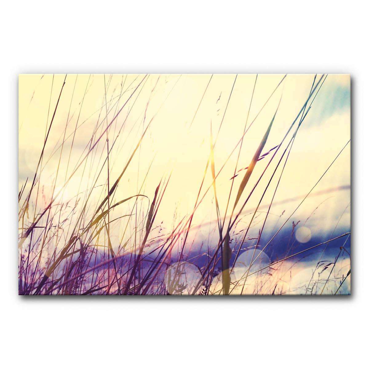 Akustikbild Gras im Sonnenaufgang