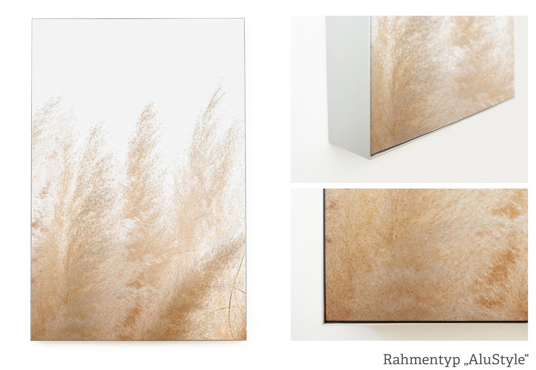 Akustikbild im AluStyle mit silber eloxiertem Aluminiumrahmen, Beispiel Motiv Pampasgras
