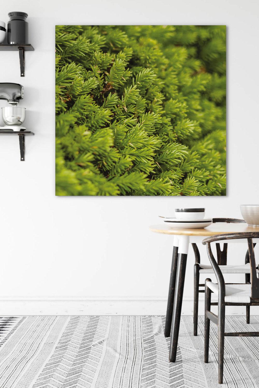 Akustikbild Moosbild I als Vertical Garden Motiv
