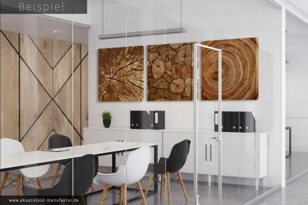 Drei Schallschutzelemente mit Holz Motiv für Besprechungsraum mit Glaswand