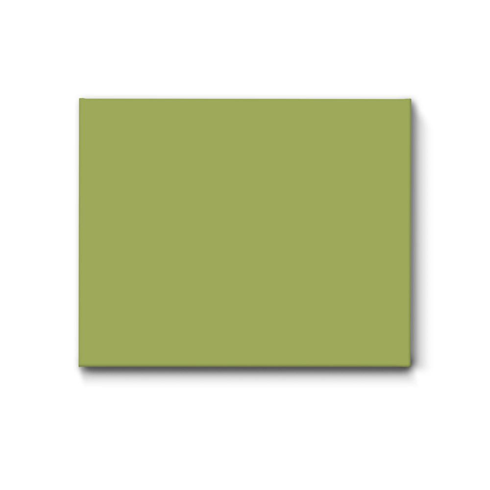 einfarbige akustikbilder schallschutz bilder avocado gruen. Black Bedroom Furniture Sets. Home Design Ideas