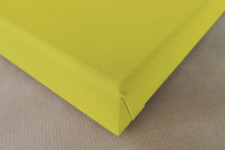 einfarbige akustikbilder schallschutz bilder grape gruen 2. Black Bedroom Furniture Sets. Home Design Ideas