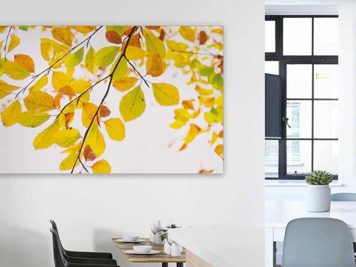 Herbstdeko mit Textilwechselrahmen: Gestalten Sie Ihre Wände saisonal mit herbstlichen Akustikbildern.