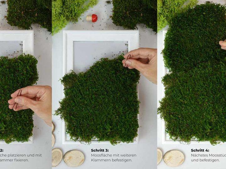 Moosbilder liegen voll im Trend. So stellen Sie ein DIY Moosbild in 7 einfachen Schritten her UND verbessern Ihre Raumakustik.
