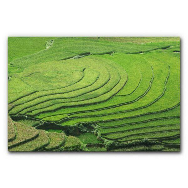 Akustibild Reisterrassen Vietnam