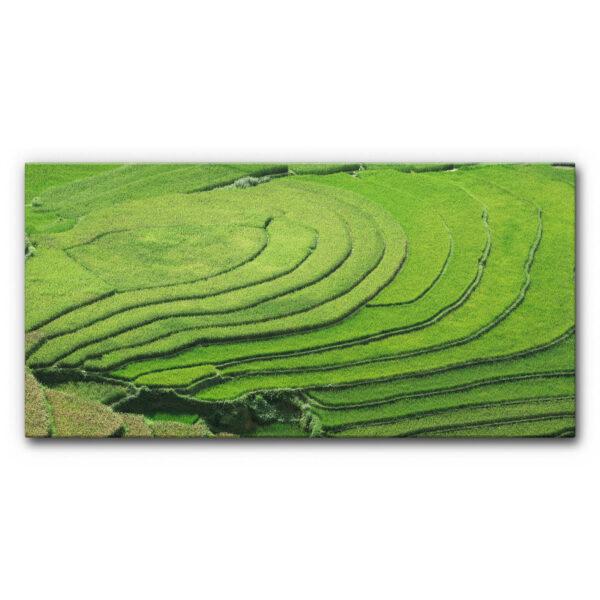 Akustibild Reisterrassen im Format 100 x 50 cm oder 200 x 100 cm