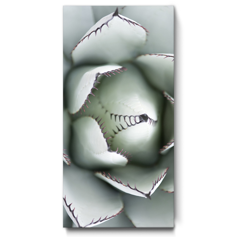 Raumakustik wandbild natur motiv agave schallabsortion sprache 2 140x70 2 zu 1 hochformat die - Wandbild hochformat ...