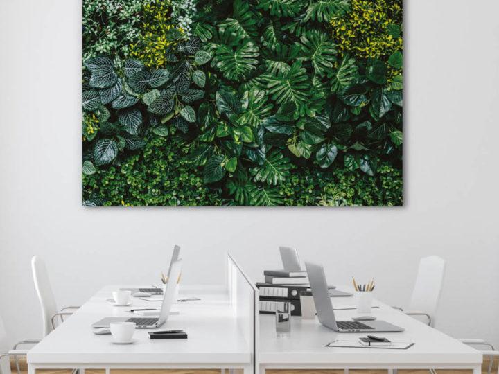 Verticalgardening, Vertical Garden oder etwas einfacher: Pflanzen an der Wand. Das ist moderne, naturnahe Wandgestaltung – auch ohne grünen Daumen.