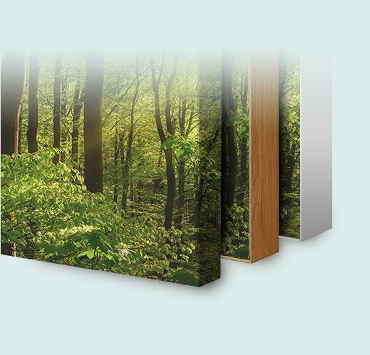 Rahmenvarianten für Akustikbilder